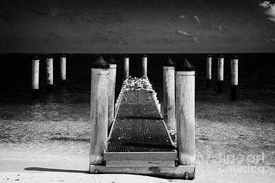 Empty Boat Pier With Seabirds Dry Tortugas Florida Keys Usa Print by Joe Fox