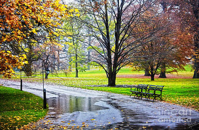 Empty Walkway On A Beautiful Rainy Autumn Day Print by Nishanth Gopinathan