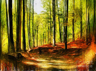 Drawing - Enchanted Forest - Drawing by Daliana Pacuraru