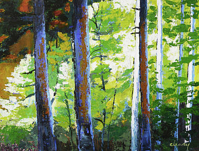 Enchanted Forest Print by Melody Cleary