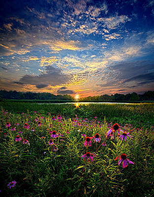 End Of The Night Print by Phil Koch