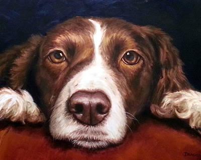 Springer Spaniel Painting - English Springer Spaniel Resting On Dark Red by Dottie Dracos
