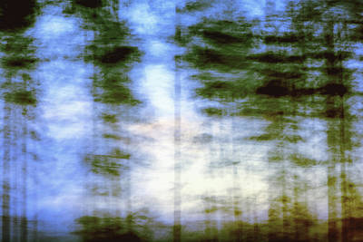 Forest Photograph - Enigmatic Forest by Ari Salmela