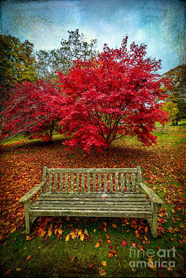 Benches Digital Art - Enjoy The View by Adrian Evans