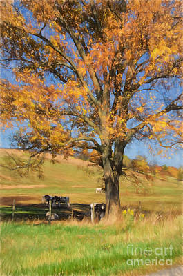 Cow Digital Art - Enjoying The Autumn Shade by Lois Bryan