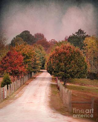 Autumn Scenes Photograph - Enter Fall by Jai Johnson