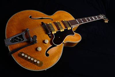 Epiphone Guitar Photograph - Epiphone Vintage Guitar by Photo Advocate