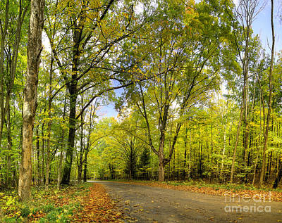 Backroad Photograph - Esch Road In Fall by Twenty Two North Photography