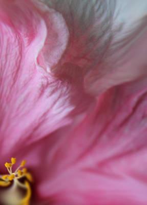 Eternally Photograph - Eternal Life by  The Art Of Marilyn Ridoutt-Greene