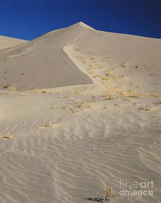 Eureka Valley Photograph - Eureka Dunes, California by Tracy Knauer