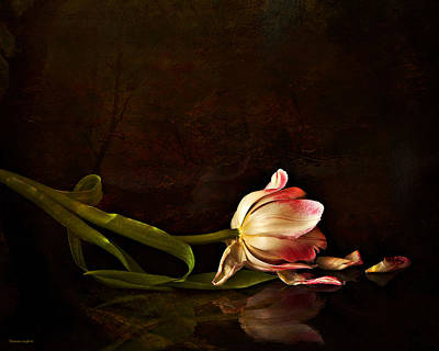Theresa Leigh Photograph - Even Though A Flower Fades by Theresa Tahara