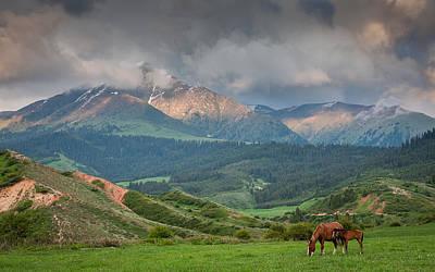 Horse Photograph - Evening Horses by Konstantin Dikovsky