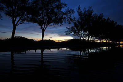 Florida Photograph - Evening Silhouettes by HH Photography of Florida