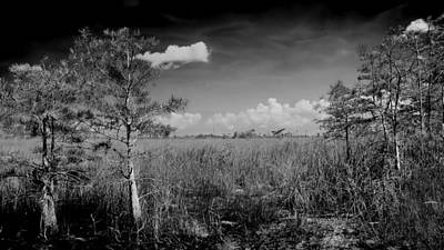 Everglades 1909bw Print by Rudy Umans