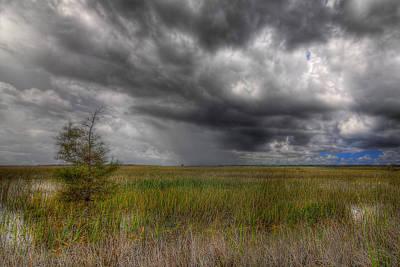 Palmetto Plants Photograph - Everglades Storm by Rudy Umans