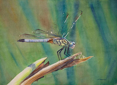 Dragonfly Painting - Evinrude by Christopher Reid