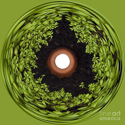 Manipulation Photograph - Excellent Drainage by Anne Gilbert
