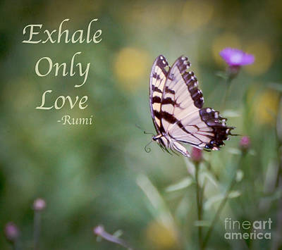 Art For Home Photograph - Exhale Only Love by Kerri Farley