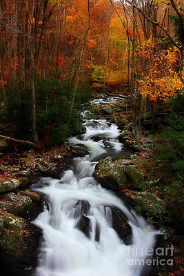 Fall Scenes Photograph - Exploring Autumn by Michael Eingle