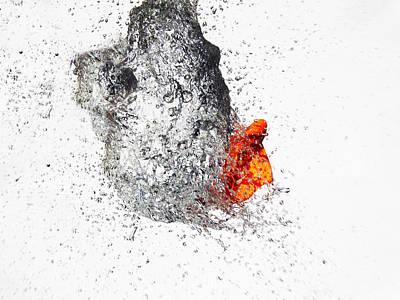 Explosive Water Balloon Print by Jay Harrison