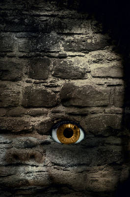 Eye In Brick Wall Print by Amanda And Christopher Elwell