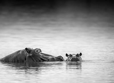 Bath Photograph - Eye Level by Jaco Marx