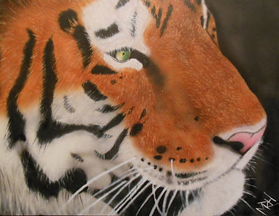 Eye Of A Tiger Print by Michael Hall
