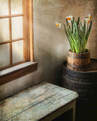 Window Bench Photograph - Reaching For The Light by Robin-lee Vieira