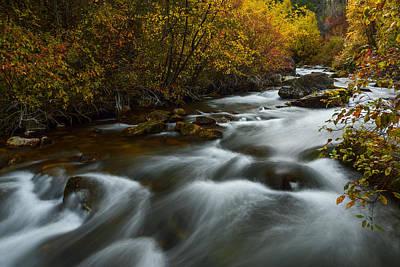 Fall Along Palisades Creek Idaho Print by Vishwanath Bhat
