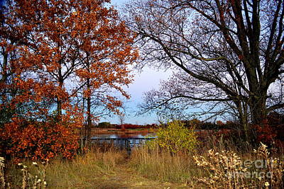 Indiana Photograph - Fall At West Park Pond by Amy Lucid
