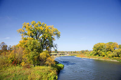 Fall Color And River Scene Print by Donald  Erickson