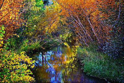 Country Photograph - Fall Color Kaleidoscope by Lynn Bauer