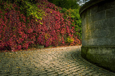 Gallery Website Photograph - Canvas Wall Art Fall Colors by Alex Saunders