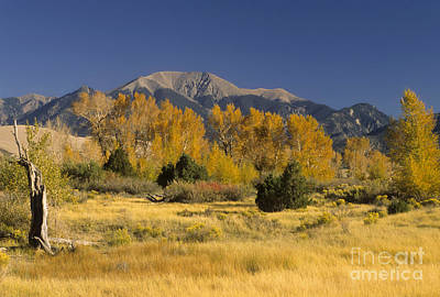 Fall Colors, Colorado Print by Richard and Ellen Thane