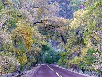 Arbres Verts Photograph - Fall Colors Of Zion by Rachel Gagne