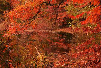 Fall Flavor Print by Lourry Legarde