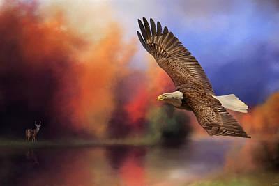 Fall Flight - Bald Eagle Print by Jai Johnson