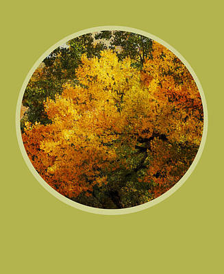 Fall Foliage Print by Ann Powell