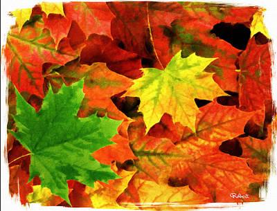 Fall Foliage Print by Bob Sandler