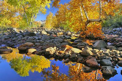 Fall In Oak Creek  Print by Dan Myers