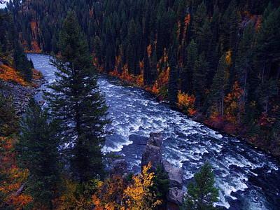 Fall Lined River Print by Raymond Salani III