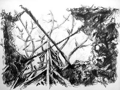Installation Art Drawing - Fall by Marc DAgusto