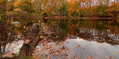 Fall Foliage Photograph - Fall Memories by Lourry Legarde
