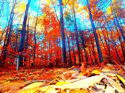 Photograph - Fall On Fire by Alicia Forton