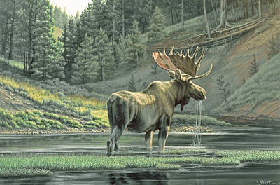 Moose Painting - Fall On The Yellowstone by Paul Krapf