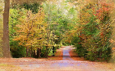 Fall Pathway Print by Judy Vincent