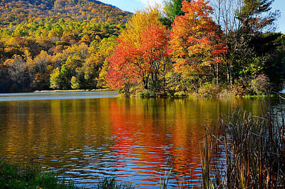 Fall Reflection Print by Todd Hostetter