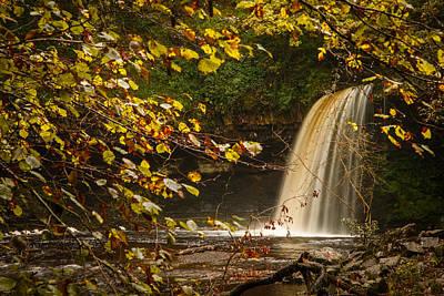 Izzy Photograph - Fall Through Fall by Izzy Standbridge