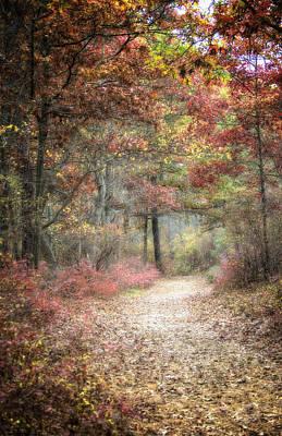 Fall Walk Print by Vicki Jauron