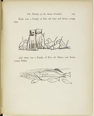Of Felines Photograph - Family Of Cats And Family Of Fishe by British Library